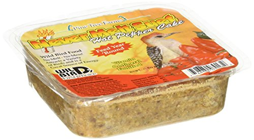 Pine Tree Farms 3013 Hot Pepper Never Melt Suet Dough, 12 Ounce