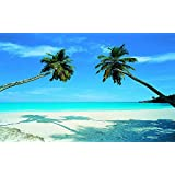 Tropical Beach Wall Mural 8ft 10in Wide x 6ft 4in High Amazoncom