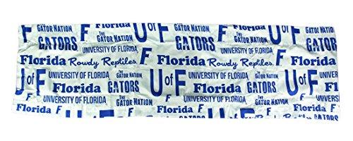 NCAA Window Valance, Florida