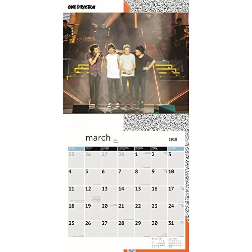 One Direction 2018 Wall Calendar Photo #2