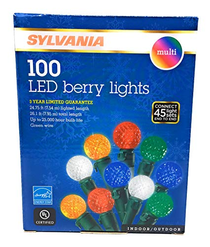 100 Led Berry Lights
