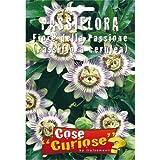 Semi - Passiflora Caerulea (Fiore della passione)