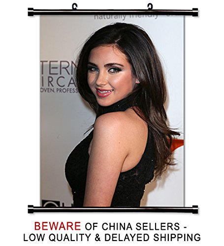 Ryan Newman Actress Model Fabric Wall Scroll Poster (32 x 46) Inches