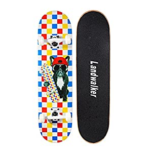 Landwalker Pro Cruiser Complete Girl Skateboard 31×8 Inch Skateboards cheap skateboard