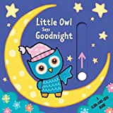 img - for Little Owl Says Goodnight: A Slide-and-Seek Book book / textbook / text book