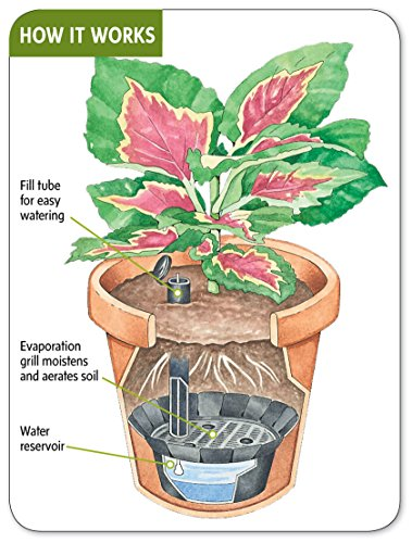 self watering kit