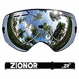 ZIONOR Snowmobile Snowboard Skate Ski Goggles with Detachable Lens and Wide Angle Anti-fog Big Spherical Professional Unisex Multicolor Ski Goggle ZR13 Silver