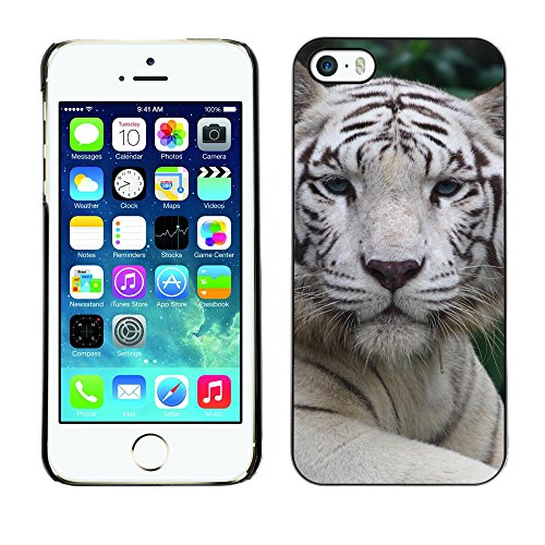 Premio Sottile Slim Cassa Custodia Case Cover Shell // V00002206 tigre blanc // Apple iPhone 5 5S 5G