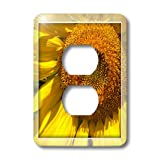 3dRose lsp_37985_6 Two Plug Outlet Cover with Yellow Sunflower Frame Floral