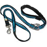Kurgo Reflective 6-in-1 Quantum Dog Leash, Coastal Blue - Lifetime Warranty