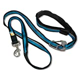 Best Kurgo Harness For Dogs - Kurgo 6-in-1 Quantum (TM) Hands Free Dog Leash Review