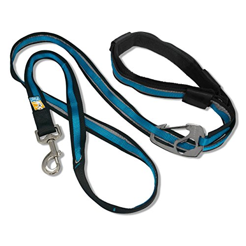 Kurgo 6-in-1 Hands Free Quantum Dog Leash, Running Dog Leash, Adjustable Dog Waist Running Belt, Reflective Dog Leash for Walking, Running, Hiking, 6 Foot Leash, Coastal Blue