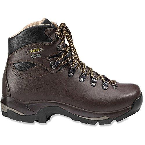 0M2066_635 Asolo Men's TPS 520 GV Hiking Boots – Chesnut