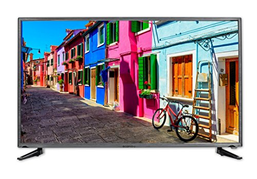 Sceptre Slim 40 Inch 1080p LED TV with Build in DVD Player E415BD-FR, TV-DVD Combo True Black ()