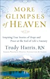 Download More Glimpses of Heaven: Inspiring True Stories of Hope and Peace at the End of Life's Journey in PDF ePUB Free Online