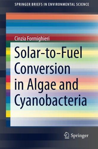 Solar-to-Fuel Conversion in Algae and Cyanobacteria (SpringerBriefs in Environmental Science)
