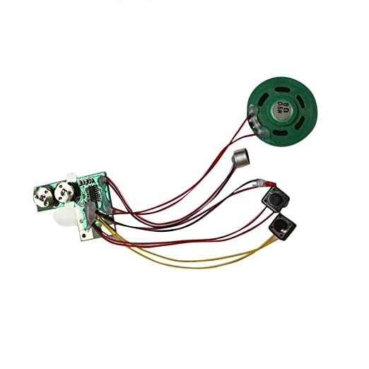 Regard L Módulo de grabación de Voz para la Tarjeta de felicitación de Música Talk Chip de Audio Musical Radio Recorder