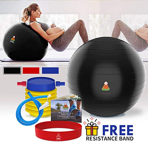 Lazy Monk Exercise Ball, Fitness Workout & Chair | Pregnancy Ball Anti-Burst Yoga Pilates Large Balance Gym Ball w/Pump, Extra Pin | Excersize Gym Swiss Ball, Elastic Loop & Hard Cover Workout Guide