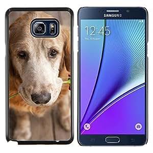 Stuss Case / Funda Carcasa protectora - Amor del golden retriever Rose - Samsung Galaxy Note 5