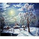 LULAA ダイヤモンド絵画キット 5Dダイヤモンド塗装 雪景色 ダイヤモンドペインティング 手作り 貼れる 装飾 壁掛け DIY おしゃれ 約40*30cm