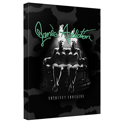 Janes Addiction Nothings Shocking Canvas Wall Art With Back Board 20X30 White