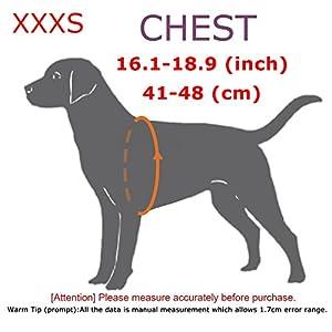 Arnés PetLove para perro, correa suave acolchada, sin tirones, diferentes tamaños
