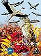 Entdecke die Zugvögel (Entdecke - Die Reihe mit der Eule)