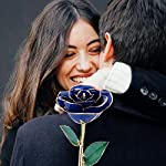 24K-Gold-Rose-Long-Stem-Dipped-Flower-Gift-for-Her-Made-of-Fresh-Rose-Last-Forever-MothersThanksgivingChristmasValentinesBirthdays-PartyGraduationsWeddings-9