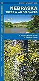 Nebraska Trees & Wildflowers: A Folding Pocket Guide to Familiar Plants (A Pocket Naturalist Guide)