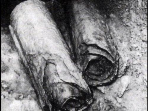 Dead Sea Scrolls: What Do the Dead Sea Scrolls Tell Us?