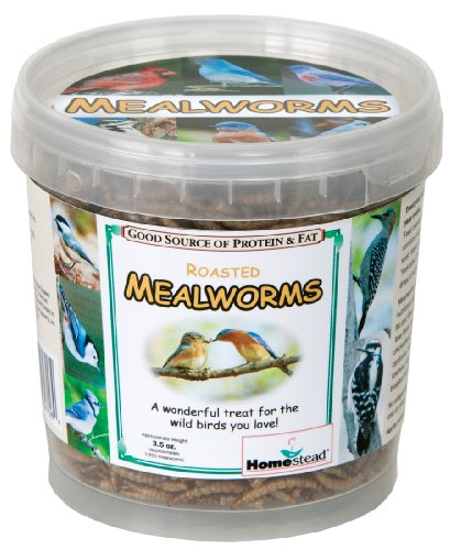 Homestead 3.5 oz Dried Meal Worm Tub - 4706