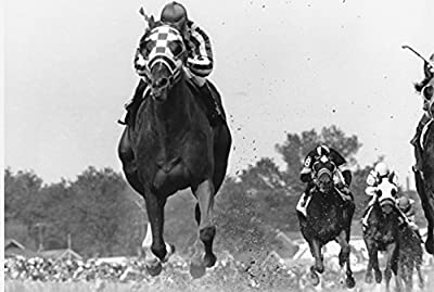 Secretariat Wins At Kentucky Derby 8 x 10 Classic Old Photos Vintage Classic Rare Find