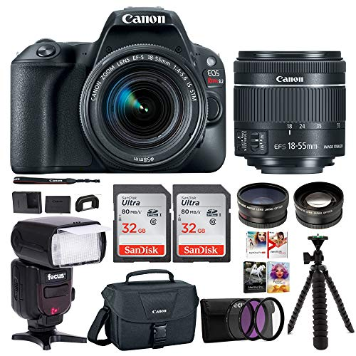 Cheap Canon EOS Rebel SL2 Digital Camera with Canon EF-S 18-55mm STM Lens : 24 Megapixel 1080p HD Video DSLR Bundle with 64GB (2X 32GB SD Cards) Mini Tripod Filter Kit Flash Bag & Charger Professional Kit
