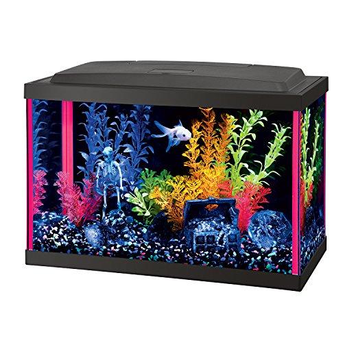 Mini Bow Desktop (Aqueon Fish NeoGlow LED Aquarium Starter Kits)