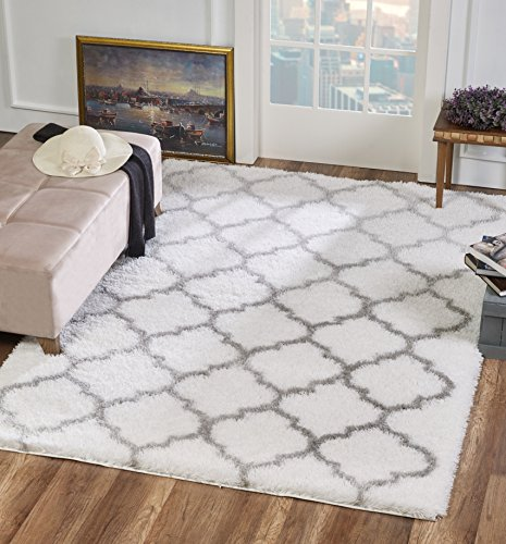 Soft Pile (Delphia Rugs Roosevelt Thick Shag Pile Fluffy Soft Plush Floor Rug 6x9 with Simple White - Light Silver Gray Pattern – Modern Luxury Designer Trellis Woven Rug for Living Area Dining Room Bedroom)