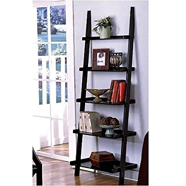 1 X Unique 72  High LEANING LADDER STYLE MAGAZINE / BOOK SHELF on Black Finish