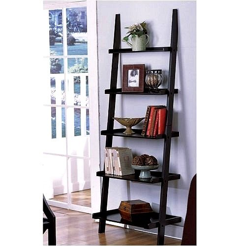 1 X Unique 72 High LEANING LADDER STYLE MAGAZINE  BOOK SHELF on Black Finish