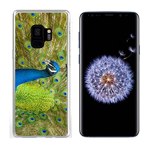 Liili Samsung Galaxy S 9 Clear case Soft TPU Rubber Silicone Bumper Snap Cases IMAGE ID: 28727558 Peacock displaying his fine feathers (Feathers Displaying Peacock)