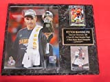 Peyton Manning Denver Broncos Super Bowl 50 Champions 2 Card Collector Plaque #1 w/8x10 Photo