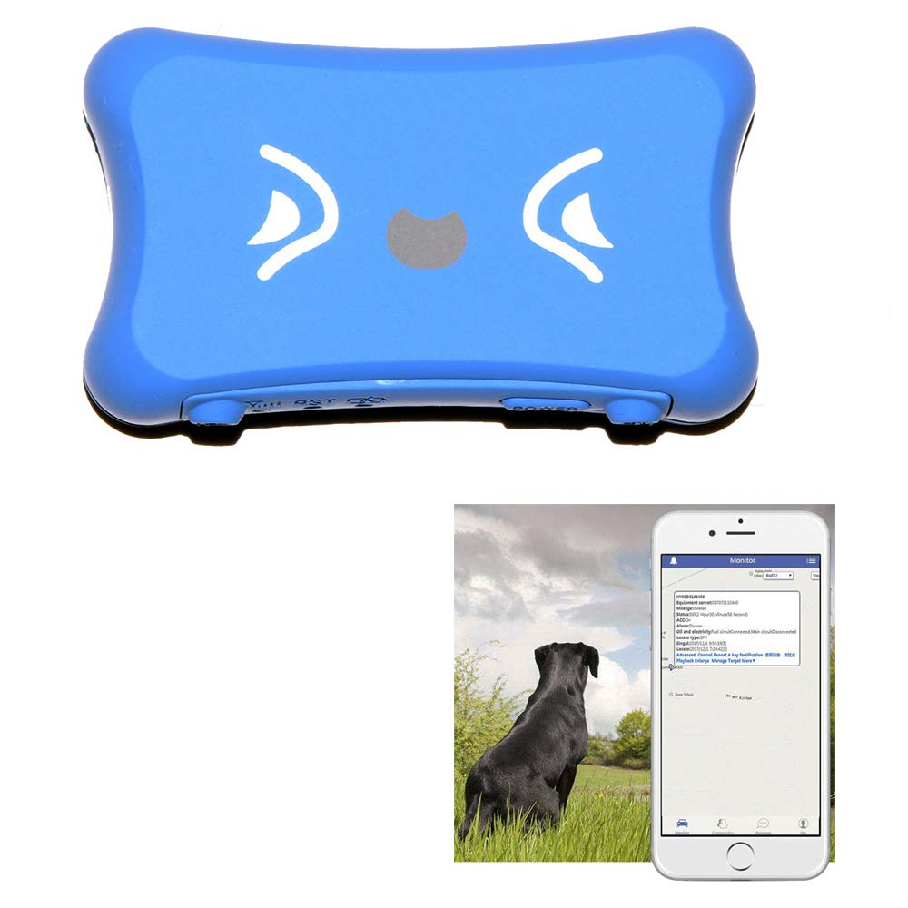 KASIONVI GPS Tracker Real time GPS Tracker IP66 Waterproof Real-time Tracking Pet GPS Tracker with APP Support iOS/Android GSM GPS Locator (Blue) by KASIONVI (Image #1)