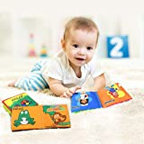 J-Sterne Cloth Book Baby, Baby's First Non-Toxic
