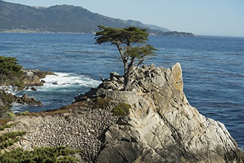 - Monterey County, CA Photo - Views from 17-Mile Drive, a scenic road through Pacific Grove and Pebble Beach on the Monterey Peninsula in California - Carol Highsmith