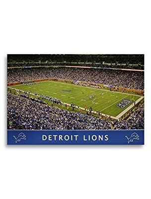 NFL Detroit Lions 33x22 Stadium Artissimo