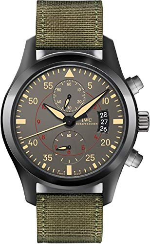 IWC Men's Swiss Automatic Stainless Steel Casual Watch, Color:Black (Model: IW388002)