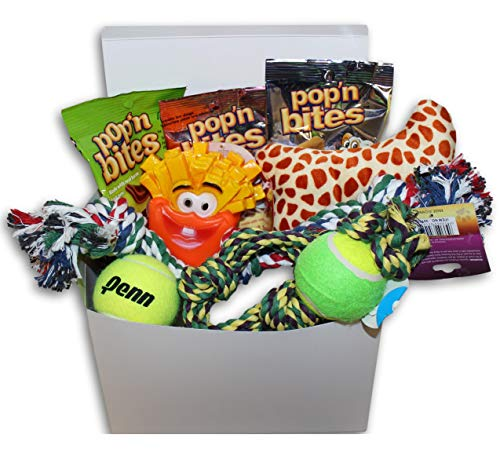 Good Dog Care Package New Pet Gift box ()