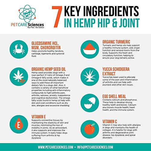 Hemp Hip and Joint Dog Treats - Also Stress, Anxiety, Calming Chew - Turmeric, Glucosamine Chondroitin, MSM, Hemp - Made In the USA - 120 Tasty Chicken Flavor Soft Chews