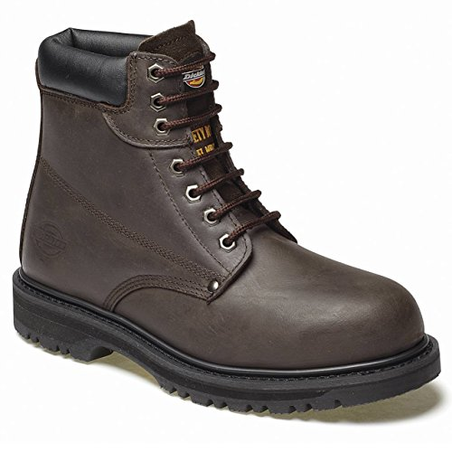 Stivali Cleveland Uomo Dickies Brown Dark w1Hg8q