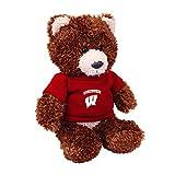 Wisconsin Badgers Teddy Bear - Brown