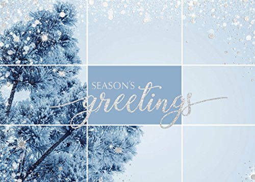 Holiday Foil Printed Greeting Cards - H1703. Greeting Card with Silver Foil Snow Elements and Season's Greetings in Silver Foil. Box Set Has 25 Greeting Cards and 26 Silver Foil Lined Envelopes. (Greetings Snow)