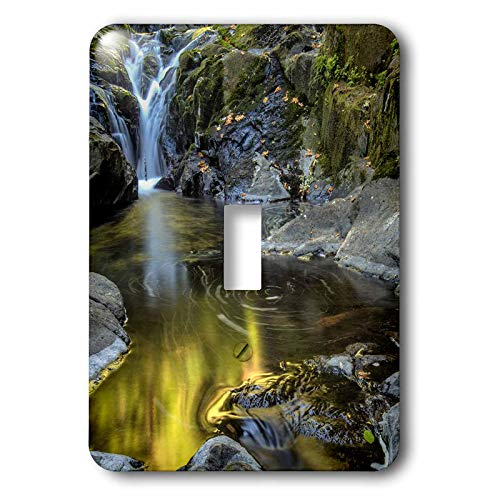 3dRose Danita Delimont - Scenics - USA, Oregon, Florence. Waterfall in stream. - 2 plug outlet cover - Florence Photographs